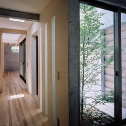 『NSH』コンパクトにまとめられた温かな住まい (明るい廊下と緑の映える庭)