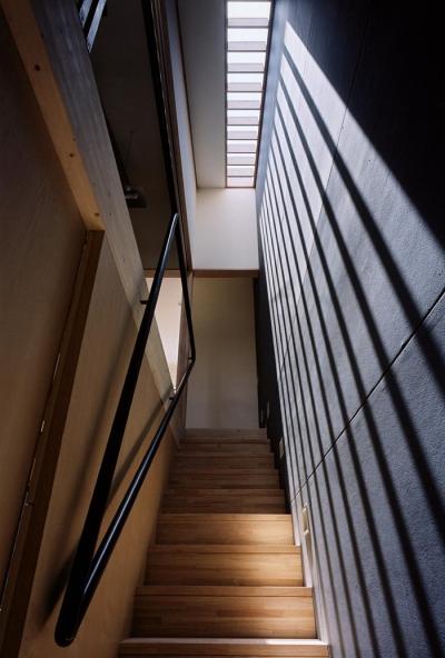 トップライトのある階段室 (『NSH』コンパクトにまとめられた温かな住まい)