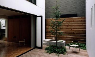 『SMH』住まい手に優しいバリアフリー住宅 (シンボルツリーのある中庭)