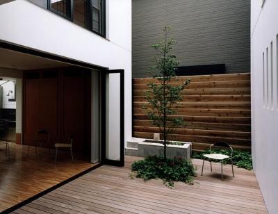 シンボルツリーのある中庭 (『SMH』住まい手に優しいバリアフリー住宅)