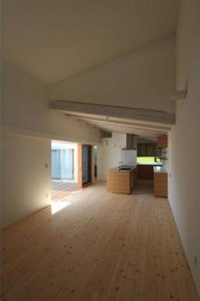 『双方流れの家』2つの片流れ屋根が表情をつくりだす住まい (天井高の異なる居間と食堂)