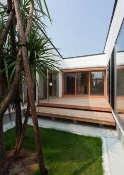 『双方流れの家』2つの片流れ屋根が表情をつくりだす住まい (開放的なテラスとシンボルツリー)