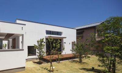 南側ウッドデッキテラスと庭|『高松の家』中庭を囲む平屋住宅