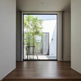 『高松の家』中庭を囲む平屋住宅 (中庭より光を取り入れる玄関)