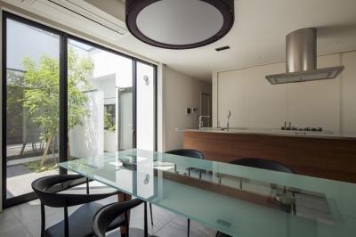 中庭に面する明るいダイニングキッチン (『高松の家』中庭を囲む平屋住宅)
