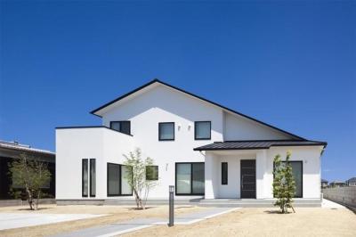 『松前町の家』おおらかな葺き下ろし屋根の家 (葺き下ろし屋根の家外観)