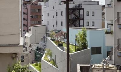 屋上庭園のある家外観|『外神田の家』コンクリート打ち放しのクールな住まい