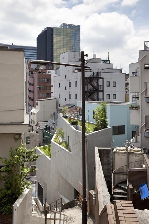 『外神田の家』コンクリート打ち放しのクールな住まいの部屋 屋上庭園のある家外観