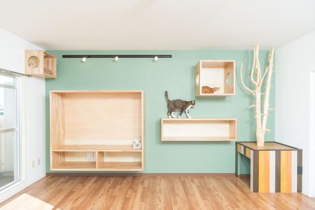 建築家:ショセット建築設計室「『埼玉県羽生市K邸』猫のための楽園♪賃貸リノベーション」