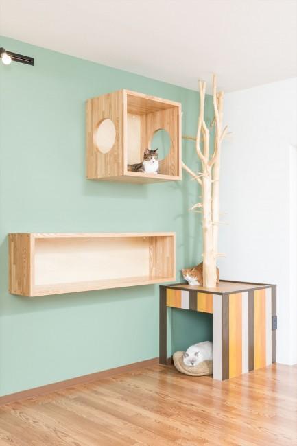 『埼玉県羽生市K邸』猫のための楽園♪賃貸リノベーションの部屋 下の箱は猫の寝床orトイレ