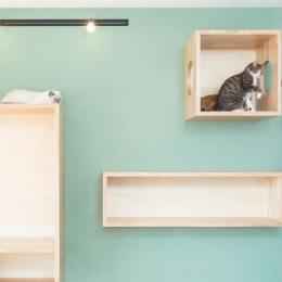 『埼玉県羽生市K邸』猫のための楽園♪賃貸リノベーション (リビング内の猫の遊び場)
