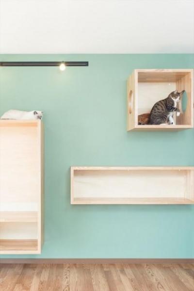 リビング内の猫の遊び場 (『埼玉県羽生市K邸』猫のための楽園♪賃貸リノベーション)