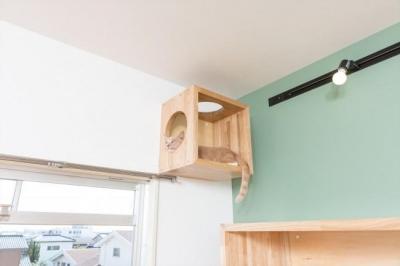 高いところが大好きな猫のための箱 (『埼玉県羽生市K邸』猫のための楽園♪賃貸リノベーション)