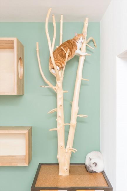『埼玉県羽生市K邸』猫のための楽園♪賃貸リノベーションの部屋 猫の爪研ぎ&キャットタワー
