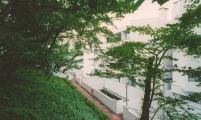 中庭を望むダイニングのあるビンテージマンションリノベ:『桜台ビレジリノベーションvol.2』(横浜市青葉区) (桜台ビレジ外観)