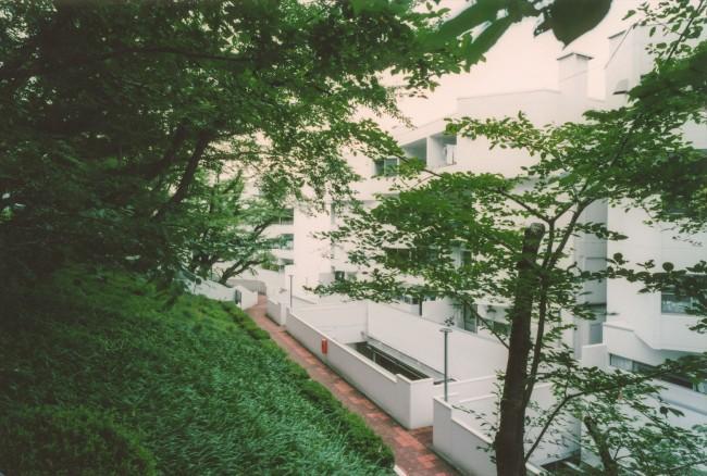 『横浜市青葉区W邸』中庭を望むダイニングのある家の部屋 桜台ビレジ外観