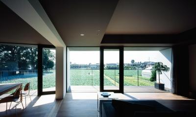 キャベツ畑と家