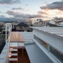 『MORI』木の温もり感じる絵本の中の家の写真 小さな屋上テラス