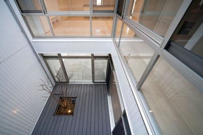 『杉浦町の家』中庭のあるシンプルな住まいの部屋 中庭を見下ろす