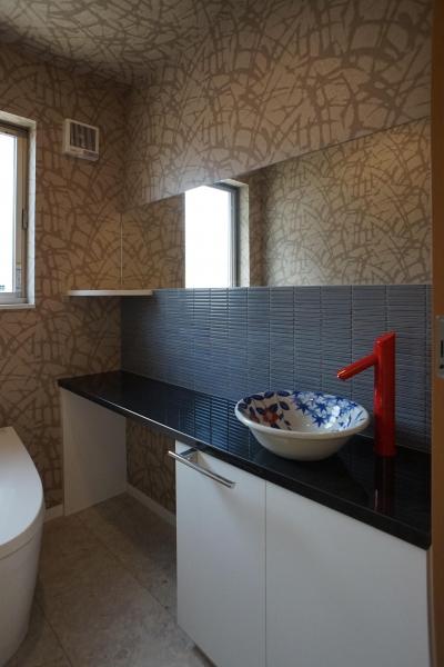 ~深い軒の外部空間を楽しむ『大屋根の美しい家』 (トイレ)