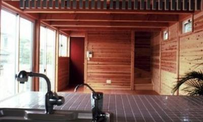 キッチンからの眺め|『七里ガ浜の家』木に包まれた住まい