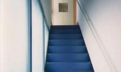 『スチールエコハウス#1』高性能住宅 (2階玄関につながる階段アプローチ)