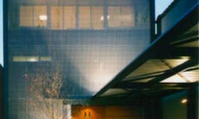 『空を臨む家』光と風を取り入れる緑豊かな住まい