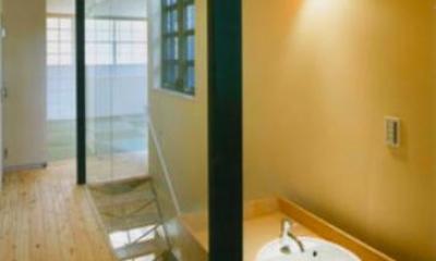 『空を臨む家』光と風を取り入れる緑豊かな住まい (廊下・手洗いスペース)