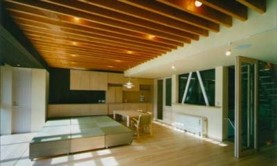 『空を臨む家』光と風を取り入れる緑豊かな住まい (畳スペースのある大空間LDK)