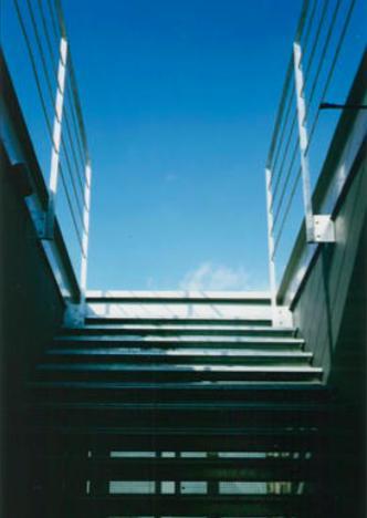 『空を臨む家』光と風を取り入れる緑豊かな住まい (屋上バルコニーにつながる階段)