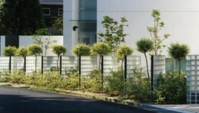 『G-BOX』シンプルモダンスタイリッシュな住まい (ファサードを彩る植栽-1)