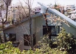 『音聞山の家』傾斜地に建つ自然を生かした住まい (外観)