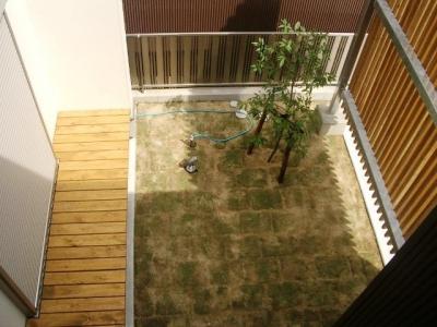 『ハコノイエ2|ニンゲンノネドコ』 (庭を見下ろす)