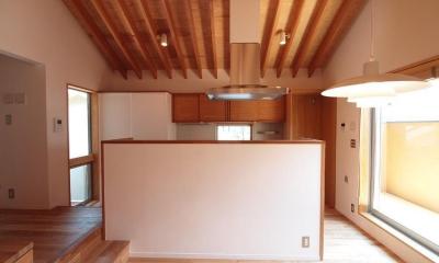 吉祥寺の家 (キッチンを見る)