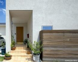 住宅作品3・庭と一体!家族の成長を見守る住まい (観葉植物が迎えてくれるアプローチ)