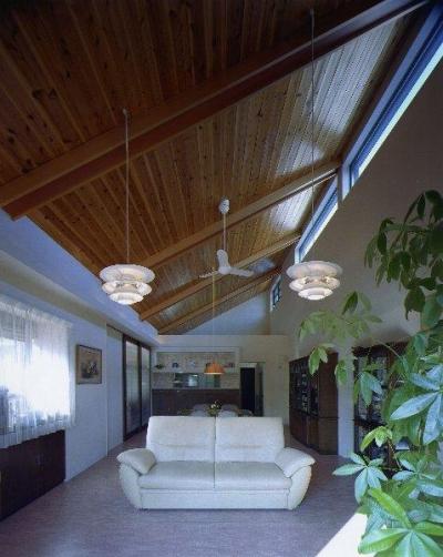 住宅作品4・勾配天井の寛ぎリビングがある住まい (勾配天井の寛ぎリビング)