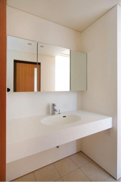 シンプルな洗面所 (『K3-House』ペットと共に生き生きと暮らす住まい)
