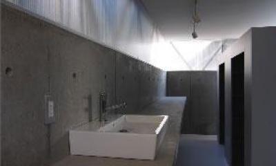 『VVV(フェーフェーフェー)』シンプルモダンな二世帯住宅 (洗面カウンター-1)