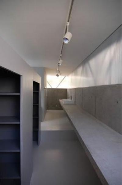 『VVV(フェーフェーフェー)』シンプルモダンな二世帯住宅 (洗面カウンター-2)