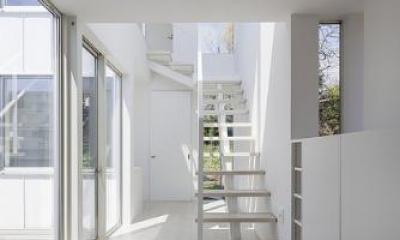 玄関より階段を見る|『蛭根の丘』白基調のスタイリッシュな住まい