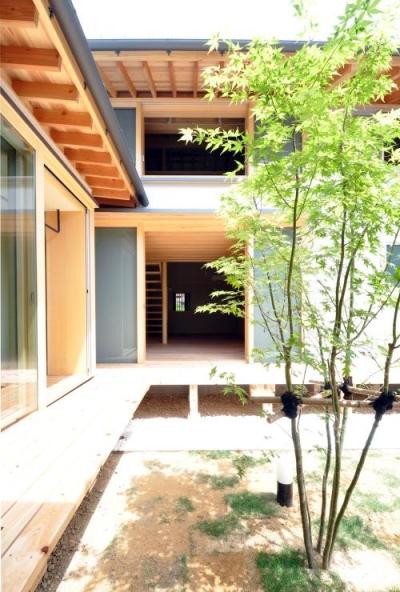 緑が映える開放的な中庭 (『那加の家』木の香りに満ちた和の住宅)