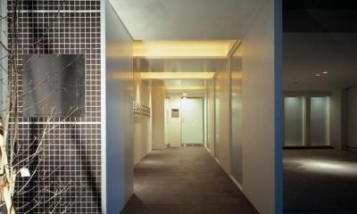 『Liverty Misasa』狭小地に建つデザイナーズマンション (スタイリッシュなエントランス)