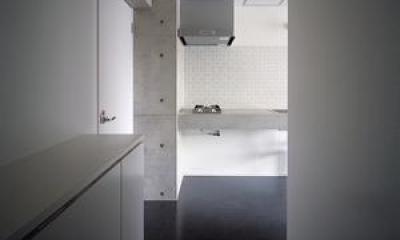 『Liverty Misasa』狭小地に建つデザイナーズマンション (type a a'-クールな玄関)