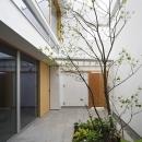 中庭-外玄関