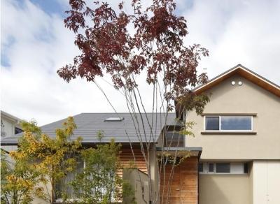『山手台の家』木の素材感・質量感を生かした和テイストの住まい (山手台の家)