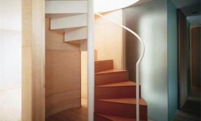 『久我山の家』狭小地に建つ、光と風を感じる住まい (スタイリッシュな螺旋階段)