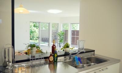 癒しの家 (開放的なキッチン)