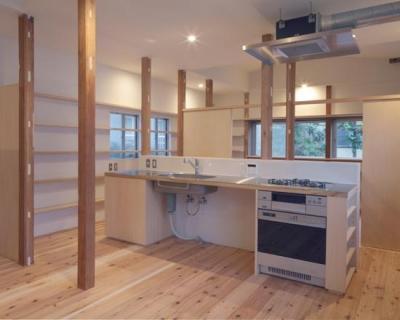 シンプルなキッチン (『矢来の家(減築)』過去の記憶や温もりを残す減築リフォーム)