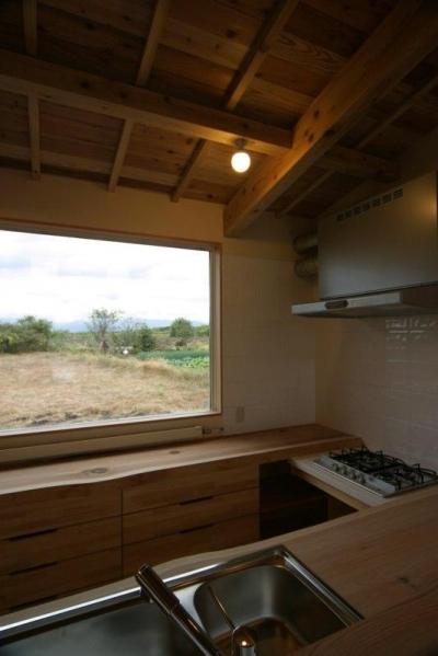 白神山地を望むことができるキッチン (『須田の家』雄大なロケーションに建つアトリエ付き平屋住宅)