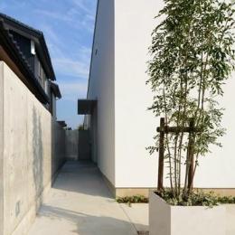 『YM-house』光と風を採り込む方流れ屋根の家 (建物脇のアプローチ)
